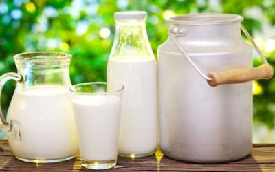 Latte intero o latte scremato?