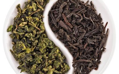 Pillole di immunonutrizione#1: il tè verde ed il tè nero